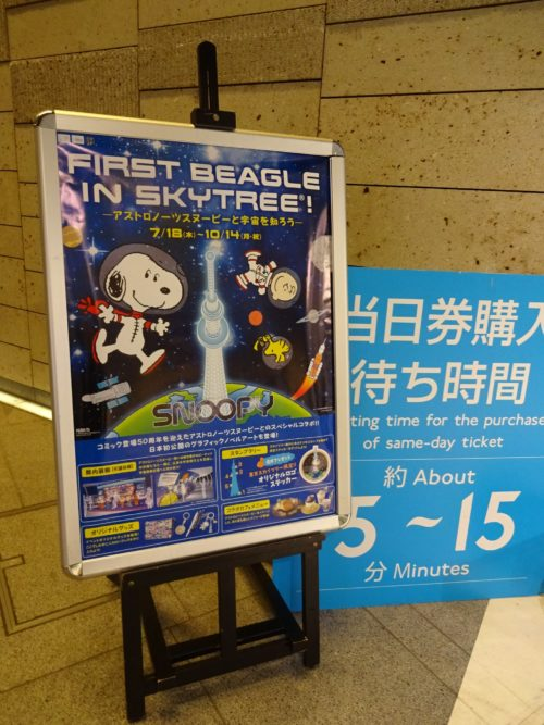 First beagle in skytree